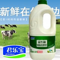 君乐宝  风味发酵乳益生菌桶装1.28L/桶 一桶 1.28L