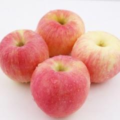 精品富士苹果   2个约1.5斤