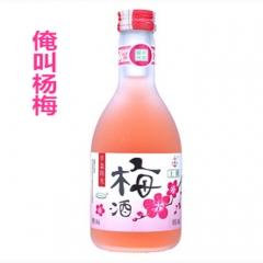 半岛阳光 天然果酒 500ml 杨梅味