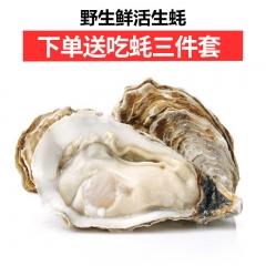 【预售】 威海乳山 野生 鲜活生蚝 10斤/箱