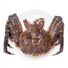 鲜活海鲜 帝王蟹 1斤