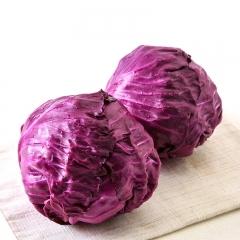 【优鲜生活】紫包菜 一斤