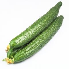 【优鲜生活】黄瓜 一斤