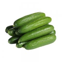 【优鲜生活】小黄瓜 一斤